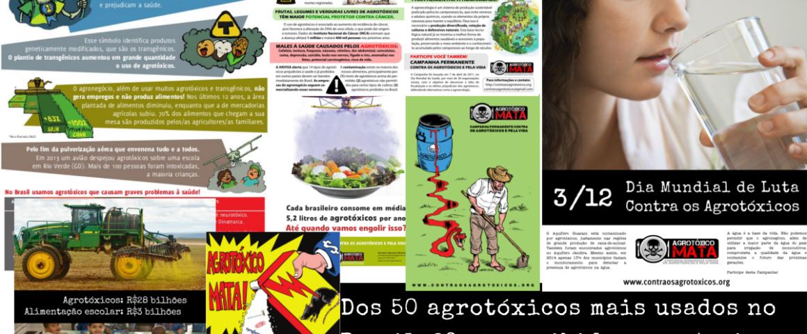 8fd285386 Coletânea: confira oito materiais produzidos pela Campanha – Campanha  Permanente Contra os Contra os Agrotóxicos e Pela Vida